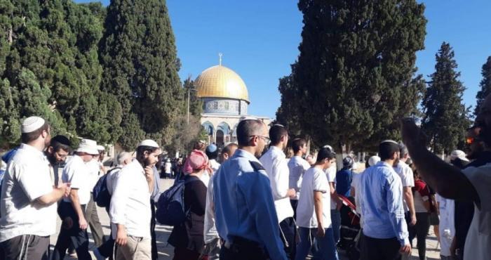 """مئات المستوطنين المتطرفين يقتحمون الأقصى احتفالًا بما يسمى عيد """"الحانوكاة"""" الصهيونى"""